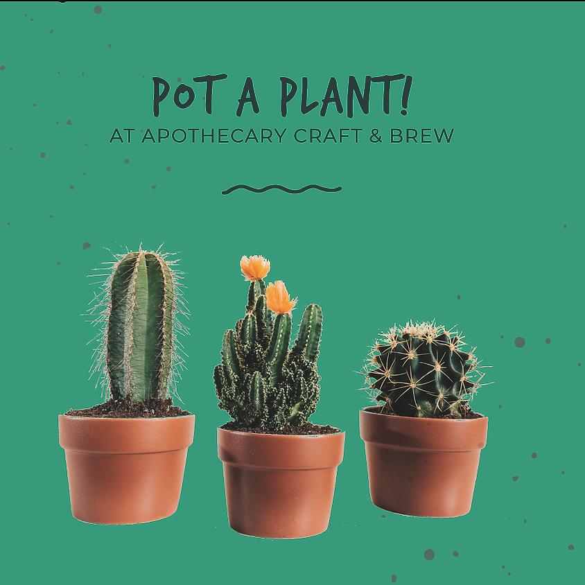 Pot a Plant!