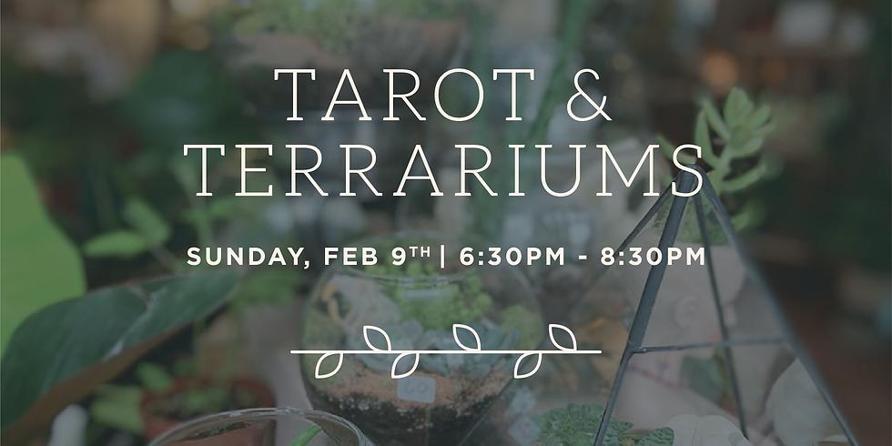 Tarot & Terrariums