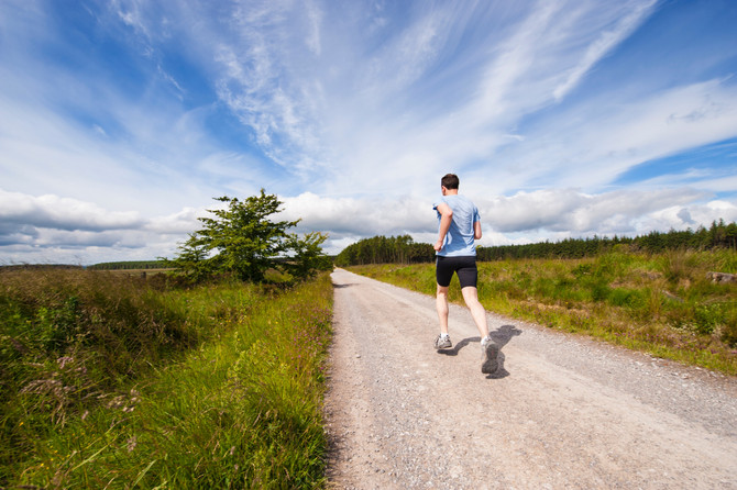 Why is endurance training a good model for writers?