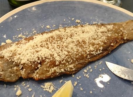 Sogliola alla parmigiana                                     -舌平目のパルミジャーナ-