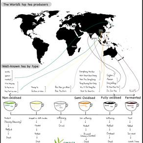 Căn bản về trà