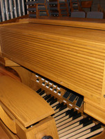 Organ_204.jpg