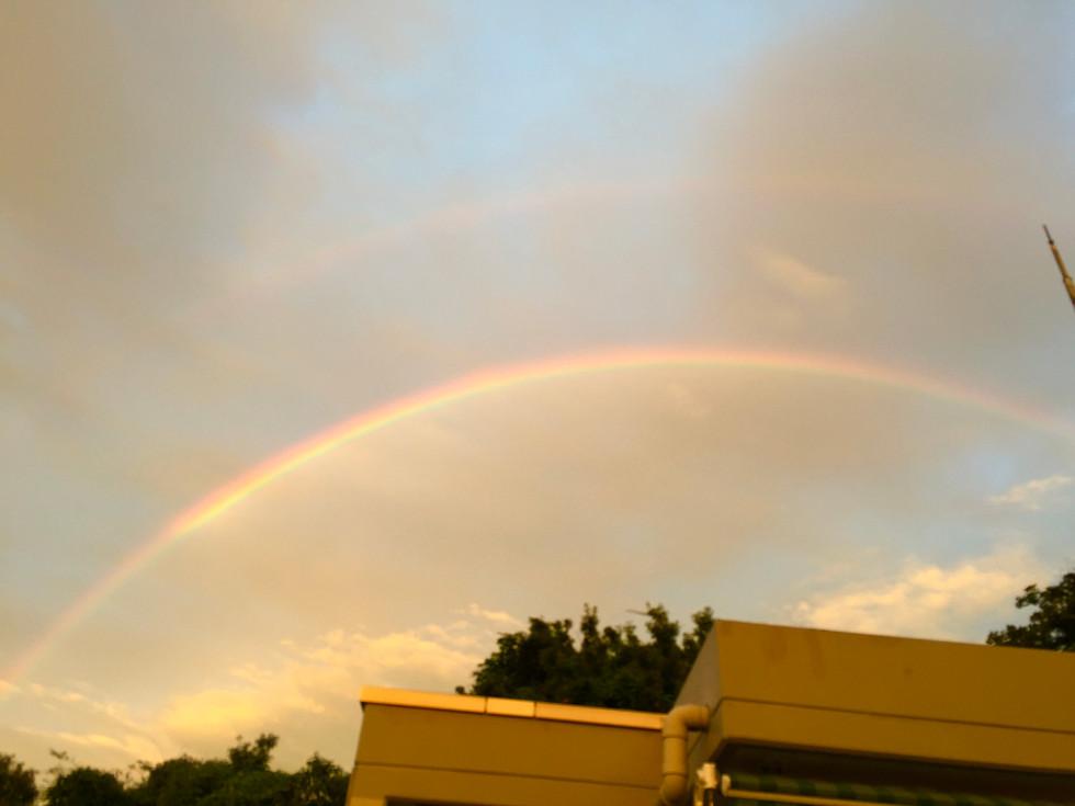 もぐの森に架かる虹