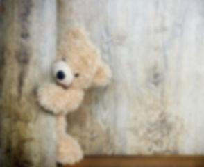 bear-3096377__480_edited.jpg