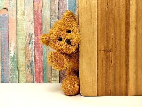 teddy-3405768__480.jpg