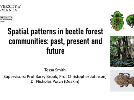 DEEP PhD student Tessa Smith presents her first seminar