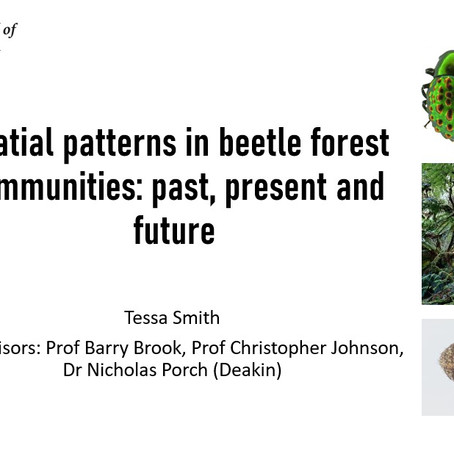 DEEP PhD student Tessa Smith presents her first seminar