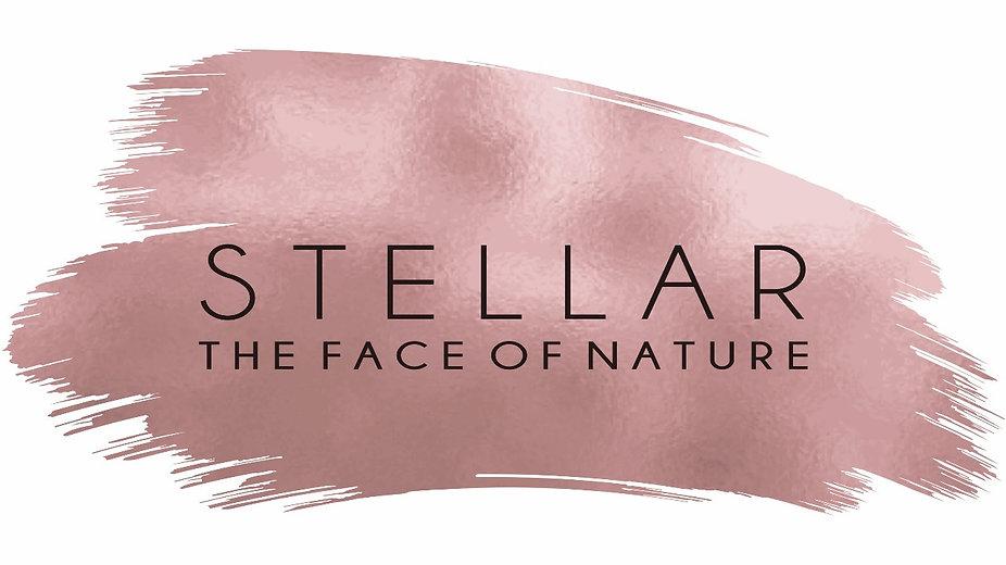 stellar logo_edited.jpg