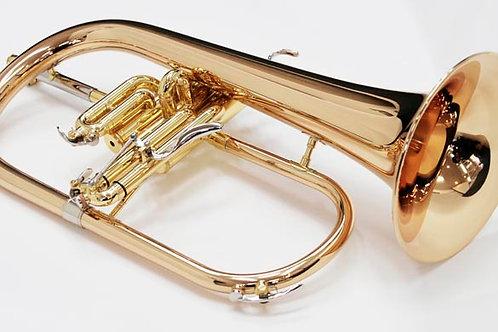 Bugel - Yamaha