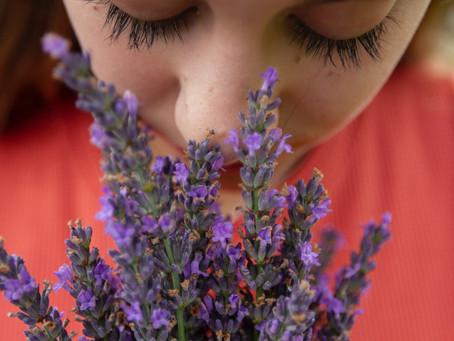Les ateliers olfactifs reprennent en 2021 !