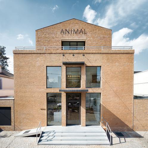 Galerie ANIMAL