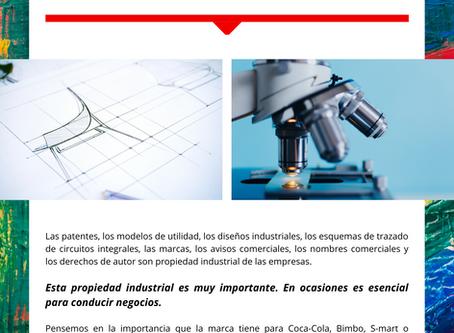 Boletín Informativo: Propiedad Industrial