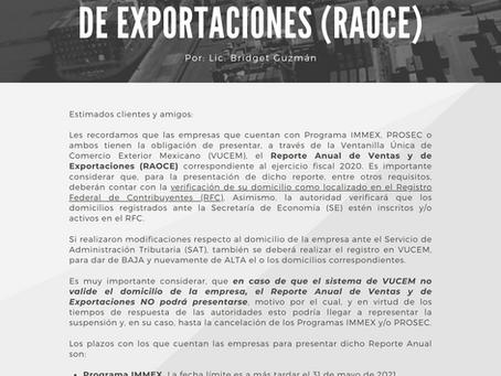 REPORTE ANUAL DE VENTAS Y DE EXPORTACIONES (RAOCE)