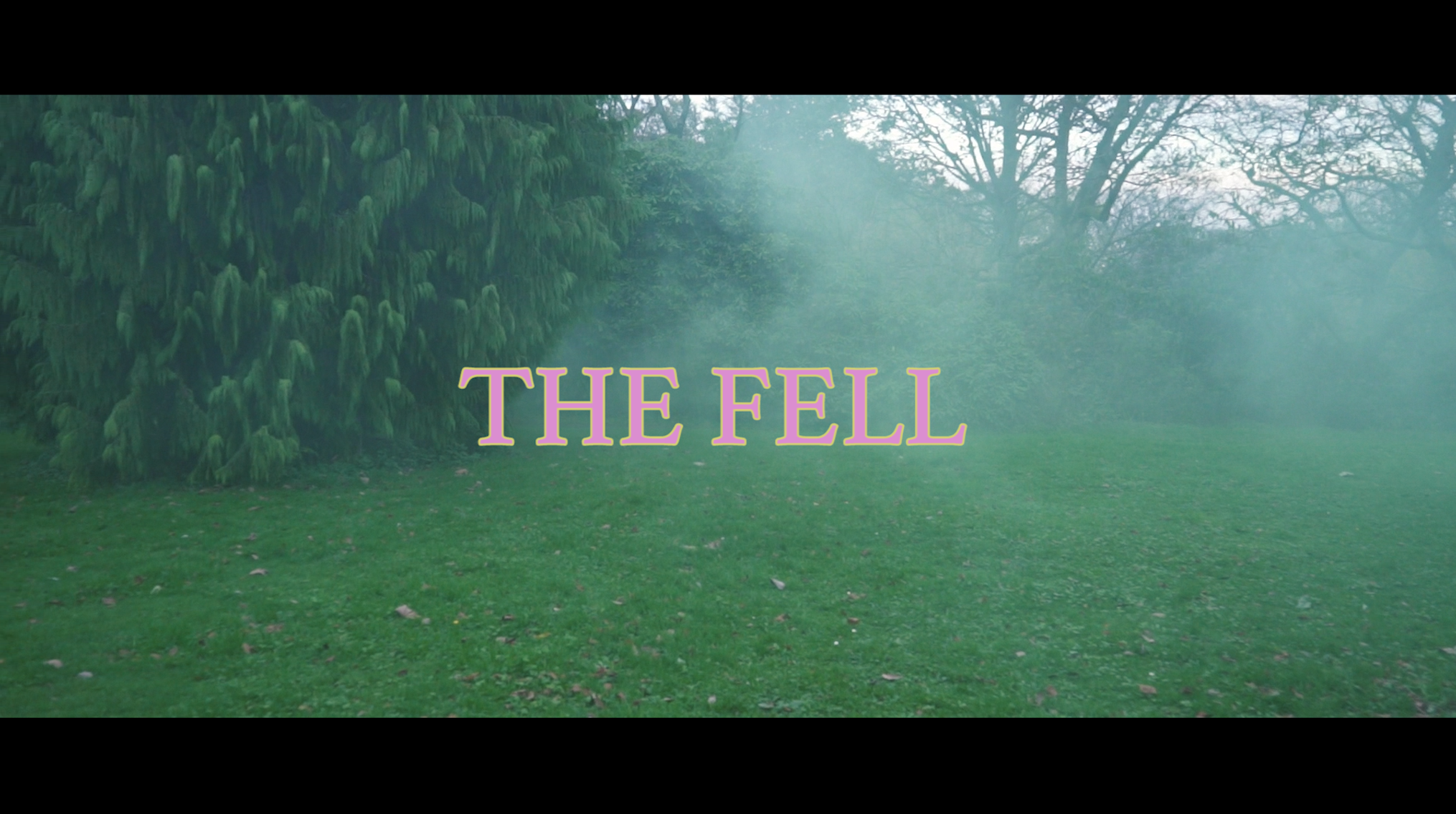 THE FELL | Title Design