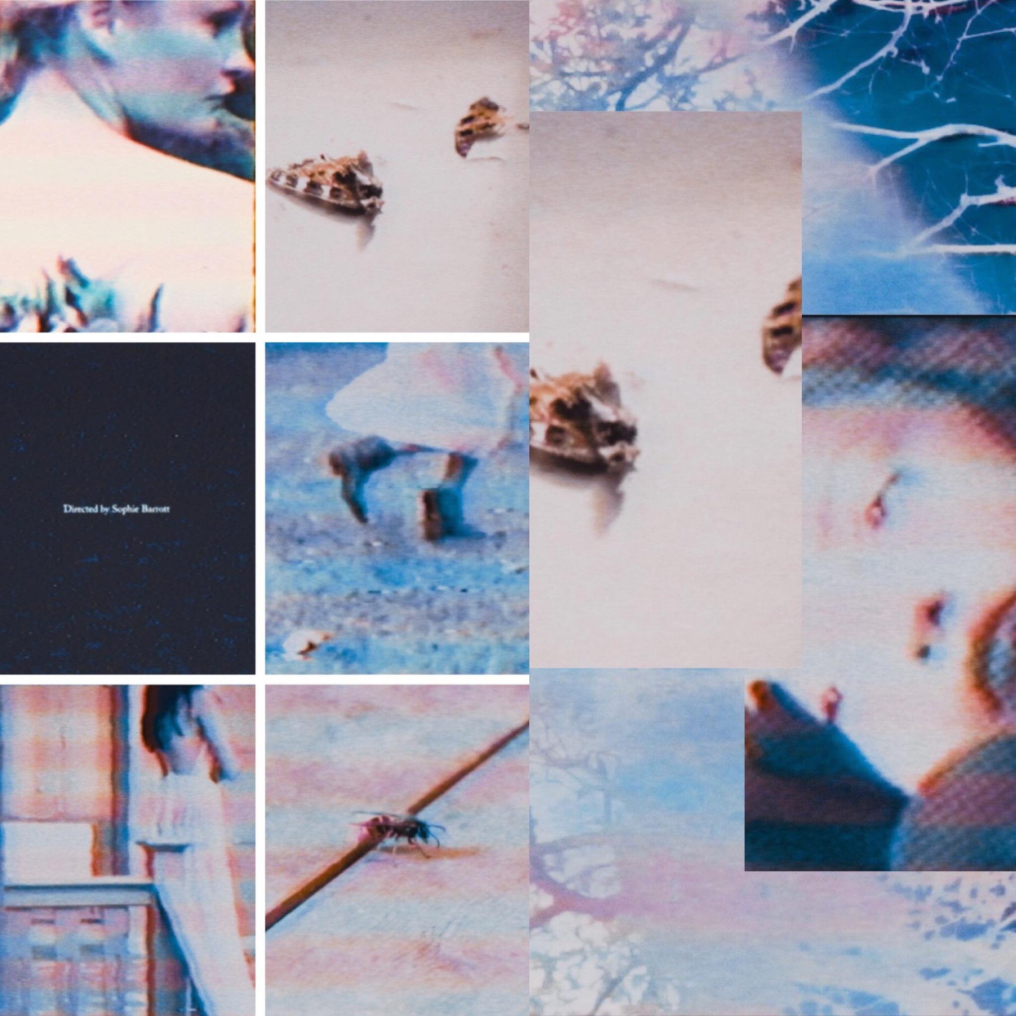Photo 04-01-2019, 02 35 03