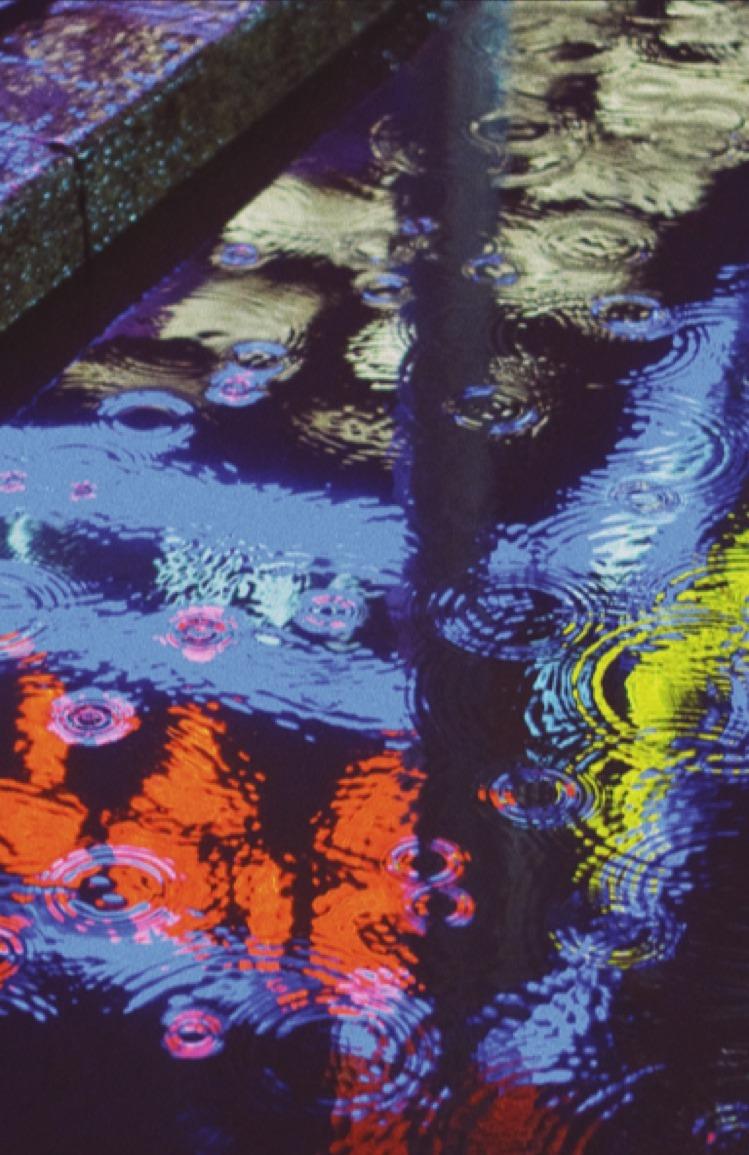 RAIN | Sophie Barrott |  Artist | Art Prints