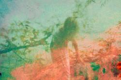 Restless (2013) Sophie Barrott    Artist   Art Prints