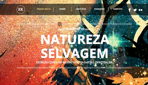 Viagens e Documental website templates – O Artista