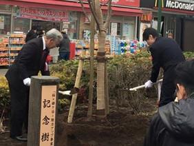 桜×鎌ケ谷=魅力アップ事業植樹式
