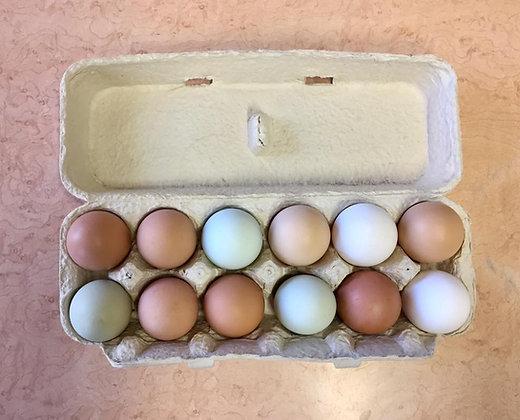 Free-Range Eggs (JH)