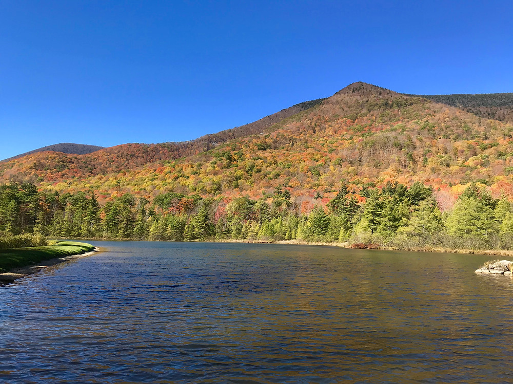 Beautiful fall foliage near Equinox Lake