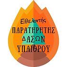 Logo Volunteer Fire Observer.jpg