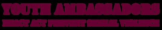 youth ambassadors logo.png