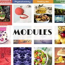 MODULES-1 website foto.png