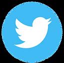 Twit Blue.png