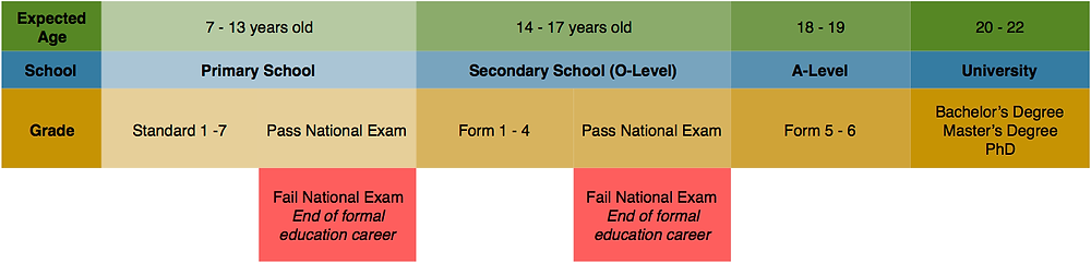 Tanzanian education system progression