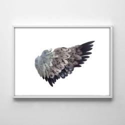 wing white frame.jpg