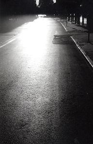 תל אביב#אדר יוסף#Adar Yosef#Tel Aviv#Niva Josef#NivaYosef#Josef Mundi#star of David#House of David#ניבה יוסף#יוסף מונדי#צביה יוסף#בית דוד#בית יוסף
