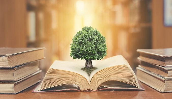 treeonbook.jpg