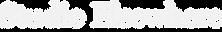 SE Logo_Header.png