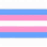 trans-flag-512.png