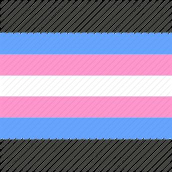 trans-flag-512.png