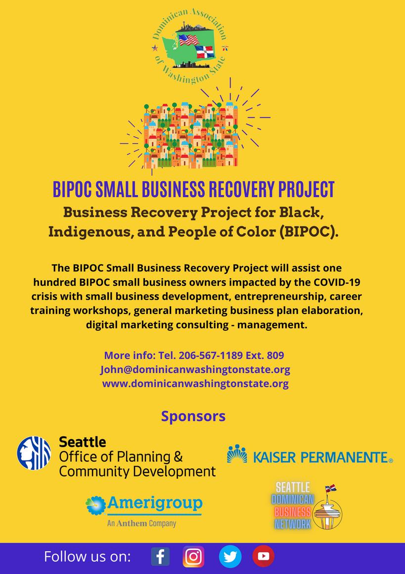 UpdatedBIPOC-SMALL BUSINESS RECOVERY PRO