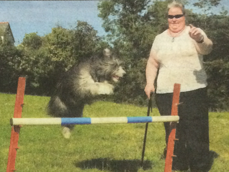 SWM support Amanda's Para Agility World Cup fundraising