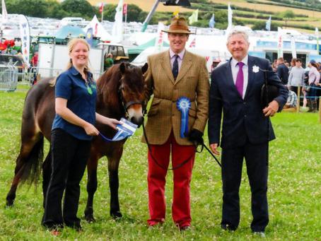 North Devon Show Success