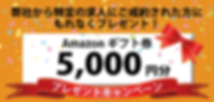 アアマゾンギフト券5000円プレゼントキャンペーン