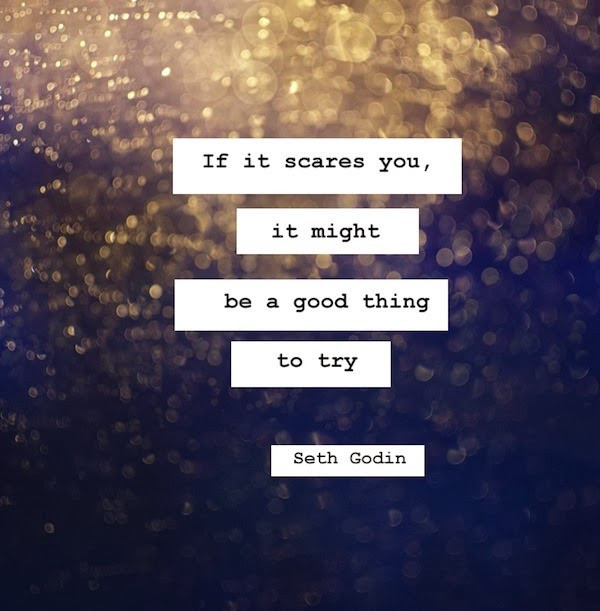 "Seth Godin ""if it scares you..."""