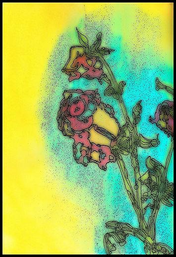 yellowrose8.jpg