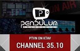 PTVN .png