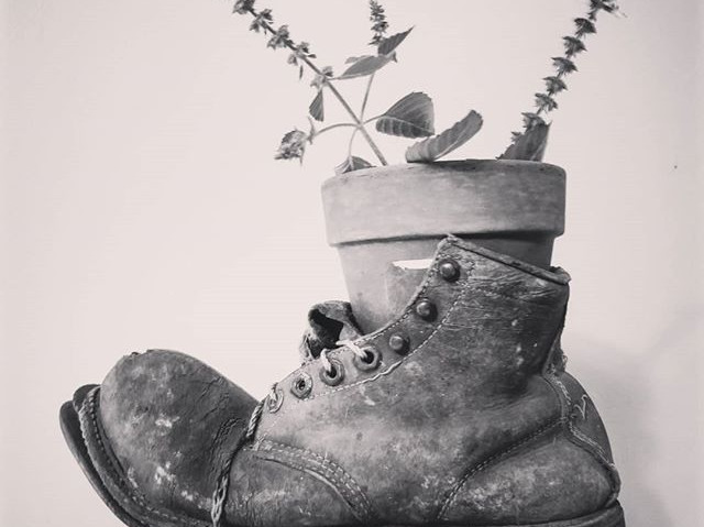 The Traveling Herb Farmer boot. Its been