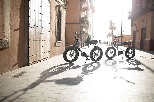RUFF CYCLES Lil'Buddy Mixed - 4 (1).jpg