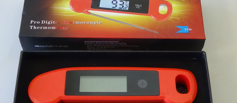 Smartro ST49 Digital Thermometer Review