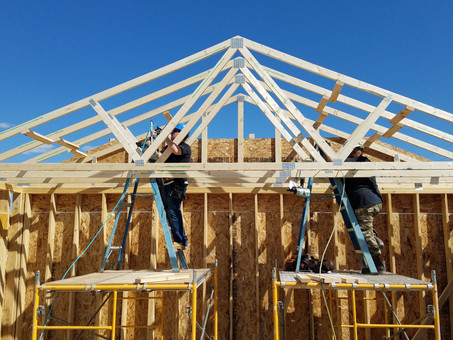 Why trusses matter to Habitat's Pat McIlwain