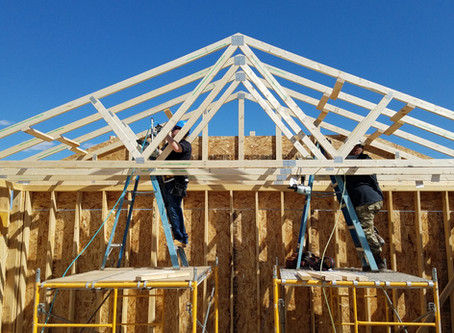 Why trusses matter to Habitat's Pat McIlwain