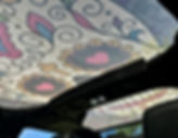 Jeep Wrangle Sugar Skull Sun Shade Top