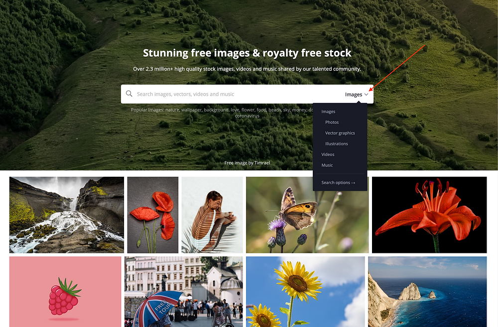 Type the category of image that you are looking for - select Photos.